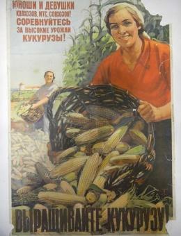 «Выращивайте кукурузу!» художник В.Тишкин 90х60 тираж 250 000 ИЗОГИЗ 1955