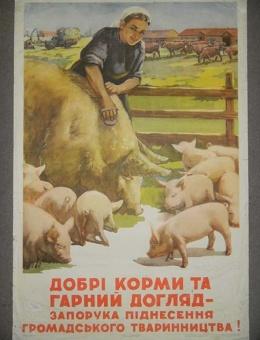 «Хорошие корма и хороший уход, залог роста в животноводстве» художник В. Яланский. 90х60. тираж 25000. Киев 1955