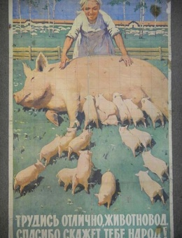 «Трудись отлично животновод спасибо скажет тебе народ» худ. Э.Арцрунян 89х56 тираж 159 000 ИЗОГИЗ 1961