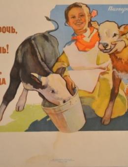 «Телят растить и мы непрочь…» художник Н.Евдошенко 42х59 трж.97 000 ИЗОГИЗ 1961г