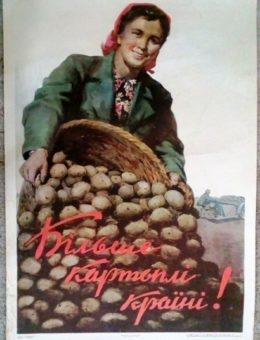 «Бiльше картоплi країнi !» Худ. М.Нестеренко 85х58 Тир. 50 000 Киев 1954г