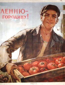 Населению свежую огородину ! Художник О.Терентьев 58х79 Киев 1955г.